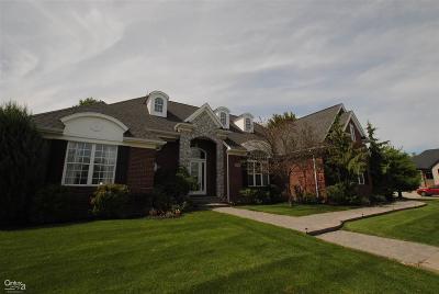 Clinton Township Single Family Home For Sale: 36293 Vita Bella