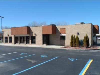 Commercial Lease For Lease: 33075 23 Mile