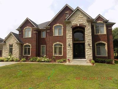 Troy Single Family Home For Sale: 4219 Crooks