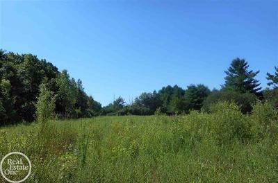 Ray, Ray Twp Residential Lots & Land For Sale: 30 Mile Rd.