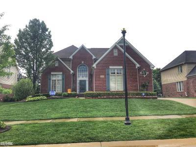 Rochester Single Family Home For Sale: 1139 Krista Lane