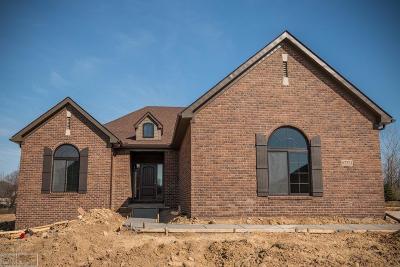 Romeo MI Single Family Home For Sale: $379,900