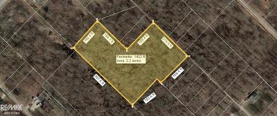 Harsens Island Residential Lots & Land For Sale: Petosky
