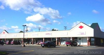 Shelby Twp Commercial Lease For Lease: 48123 Van Dyke Ave