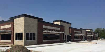 Macomb Twp Commercial/Industrial For Sale: Hayes
