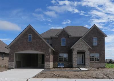 Macomb Single Family Home For Sale: 49322 Monarch Dr