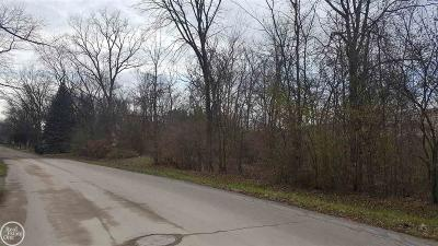 Rochester Residential Lots & Land For Sale: Michelson