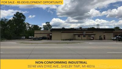 Shelby Twp Commercial/Industrial For Sale: 55748 Van Dyke