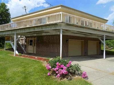 Washington Twp Single Family Home For Sale: 67667 Sisson