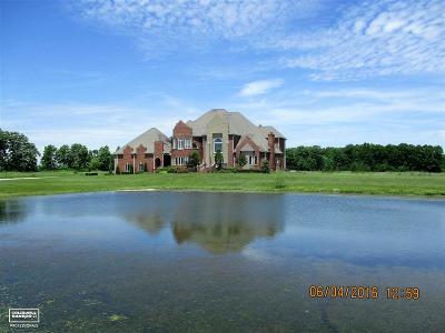 Armada Single Family Home For Sale: 73050 Castle
