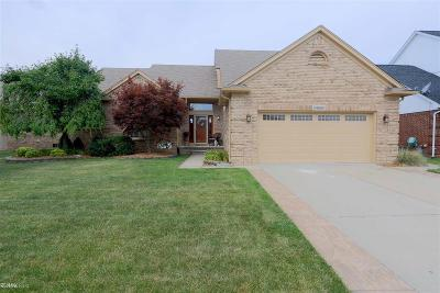 Macomb Twp Single Family Home For Sale: 54069 Lily Dr
