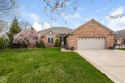 Macomb Twp Single Family Home For Sale: 48058 Kings Ct