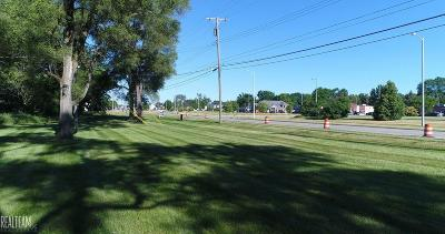 Sterling Heights Residential Lots & Land For Sale: 44924 Duffield