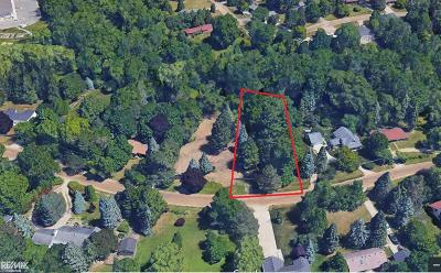 Residential Lots & Land For Sale: 244 Shadywood