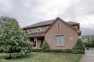 Macomb Twp Single Family Home For Sale: 20392 Breezeway