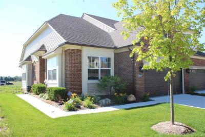 Clinton Township Condo/Townhouse For Sale: 40616 Azalea Dr
