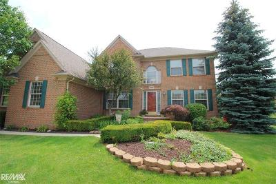 Clinton Township Single Family Home For Sale: 42680 Chippewa Dr.