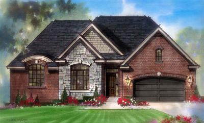 Macomb Single Family Home For Sale: 21948 Majestic Dr. East