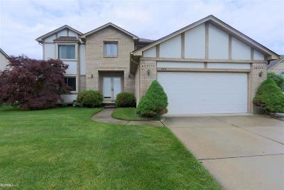 Macomb Twp Single Family Home For Sale: 53345 Rebecca