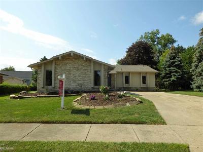 Clinton Township Single Family Home For Sale: 16420 Faulman