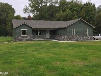 Algonac Single Family Home For Sale: 8910 Marsh Rd