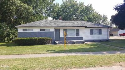 Clinton Township Single Family Home For Sale: 20410 Colman