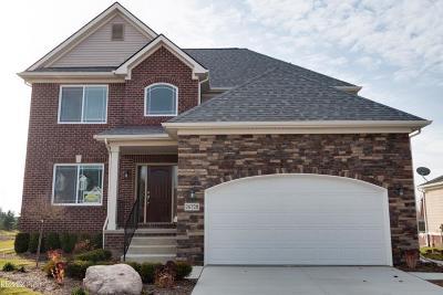 Armada, Armada Twp Single Family Home For Sale: 75361 True