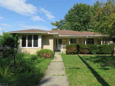 Romeo, Richmond Single Family Home For Sale: 69354 Stone St