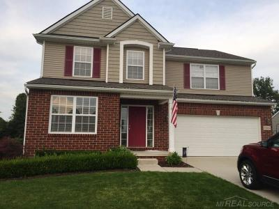 Macomb Twp Single Family Home For Sale: 52634 Delena