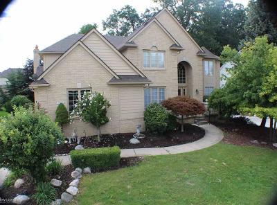 Rochester Hills Single Family Home For Sale: 2020 Mapleridge