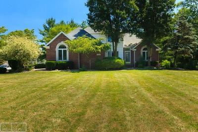 Romeo, Richmond Single Family Home For Sale: 76210 Burman