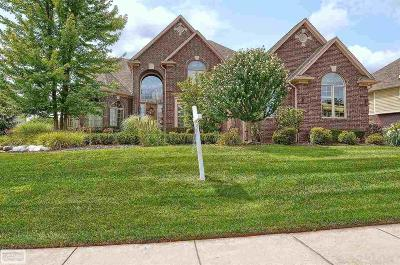 Rochester Hills Single Family Home For Sale: 1372 Clear Creek Drive