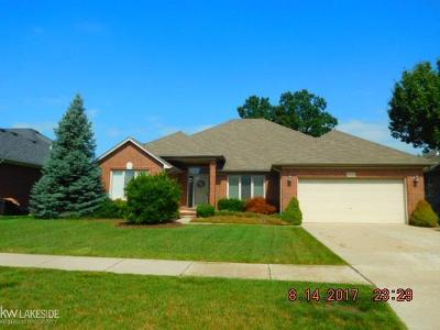 Macomb MI Single Family Home For Sale: $309,900