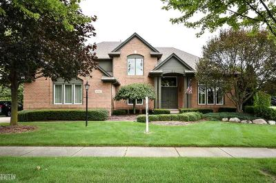 Macomb Single Family Home For Sale: 13927 Silent Woods