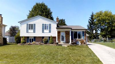 Sterling Heights Single Family Home For Sale: 5021 Chippewa Ct