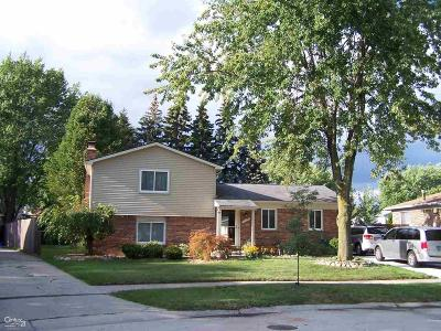 Clinton Township Single Family Home For Sale: 17375 Loranger