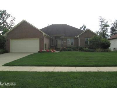 Auburn Hills Single Family Home For Sale: 3111 Ramzi
