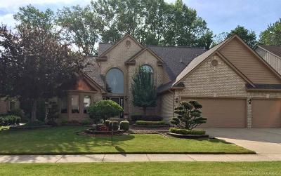 Macomb Twp Single Family Home For Sale: 46612 Springwood Dr