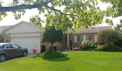 Clinton Township Single Family Home For Sale: 18566 Hearthside