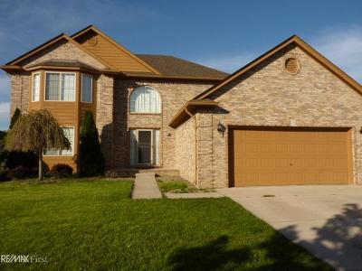 New Baltimore Single Family Home For Sale: 51682 Promenade