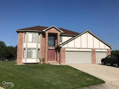 Sterling Heights Single Family Home For Sale: 4585 Lancelot