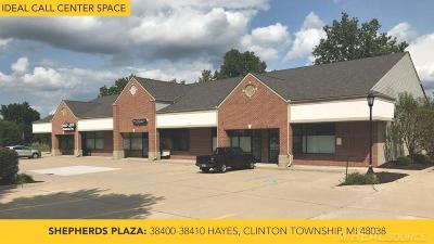 Clinton Township Commercial Lease For Lease: 38400 Hayes