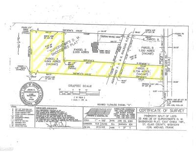 Residential Lots & Land For Sale: 2783 Belle River