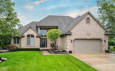 Macomb Twp Single Family Home For Sale: 16387 Applewood Crt
