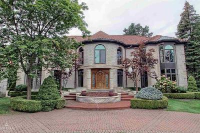 Clinton Township Single Family Home For Sale: 17474 Iris Circle