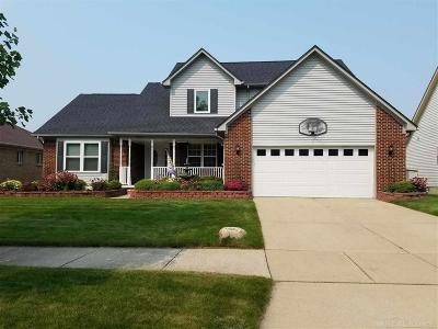 New Baltimore Single Family Home For Sale: 37375 Sienna Oaks