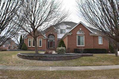 Shelby Twp Single Family Home For Sale: 4096 Clear Spring