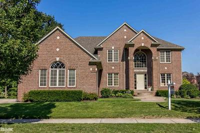 Shelby Twp Single Family Home For Sale: 52652 Forest Gve