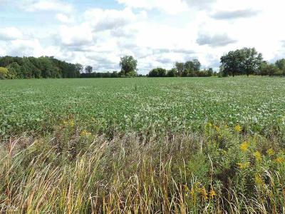 Armada, Armada Twp Residential Lots & Land For Sale: Romeo Plank