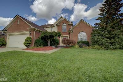 Shelby Twp Single Family Home For Sale: 14395 Glenwood